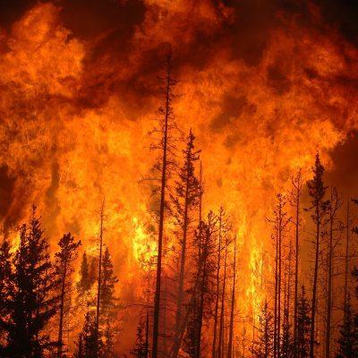 Waldbrand in Western Alberta, Kanada, Juni 2009 | © Cameron Strandberg CC BY 2.0 / Wikimedia Commons